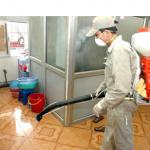 Dịch vụ diệt Muỗi tận gốc – vệ sinh công nghiệp hà nội